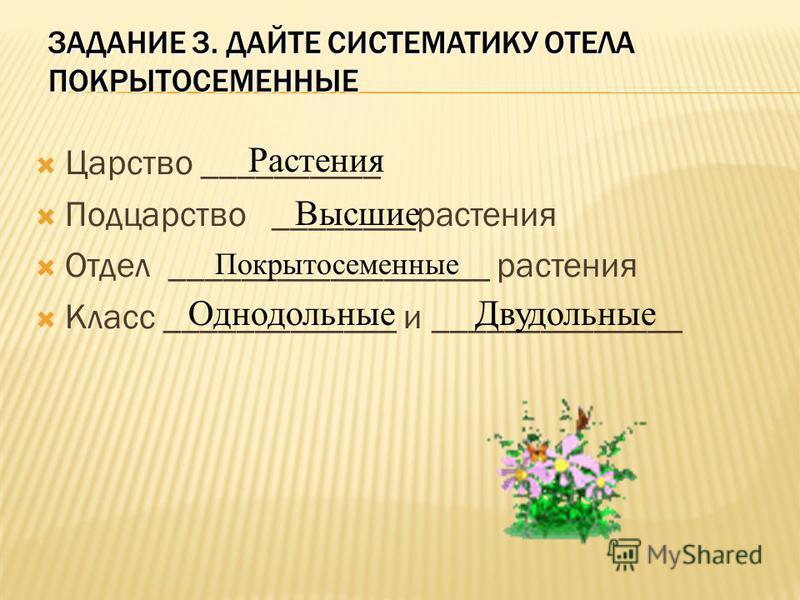 ЗАДАНИЕ 3. ДАЙТЕ СИСТЕМАТИКУ ОТЕЛА ПОКРЫТОСЕМЕННЫЕ Царство __________ Подцарство ________растения Отдел __________________ растения Класс _____________ и ______________ Растения Высшие Покрытосеменные Однодольные Двудольные