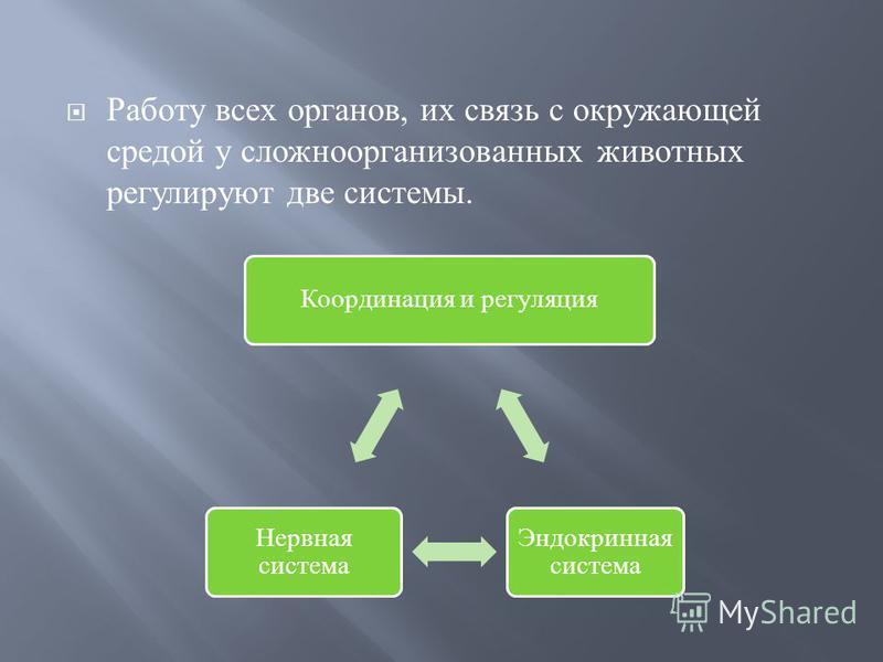 Работу всех органов, их связь с окружающей средой у сложноорганизованных животных регулируют две системы. Координация и регуляция Эндокринная система Нервная система