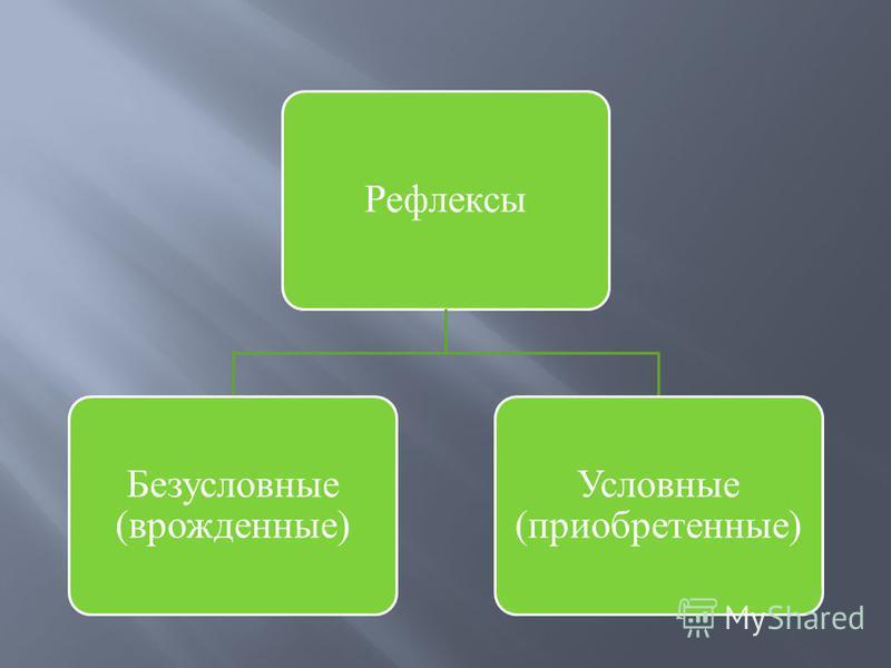 Рефлексы Безусловные (врожденные) Условные (приобретенные)