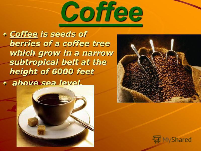 Coffee Coffee is seeds of berries of a coffee tree which grow in a narrow subtropical belt at the height of 6000 feet above sea level. above sea level.