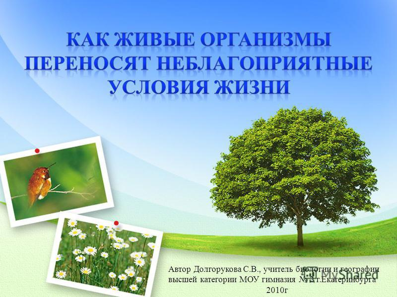 Автор Долгорукова С.В., учитель биологии и географии высшей категории МОУ гимназия 2 г.Екатеринбурга 2010 г