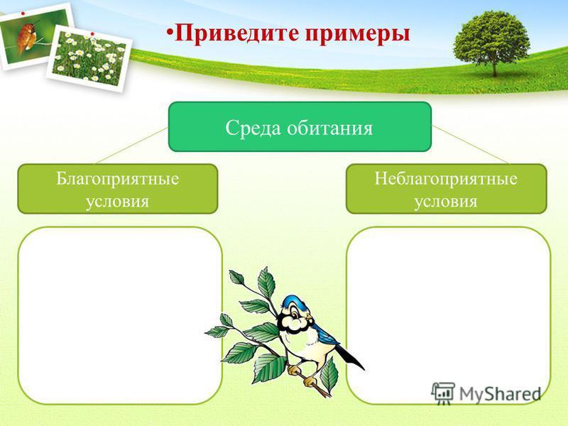 Приведите примеры Среда обитания Благоприятные условия Неблагоприятные условия