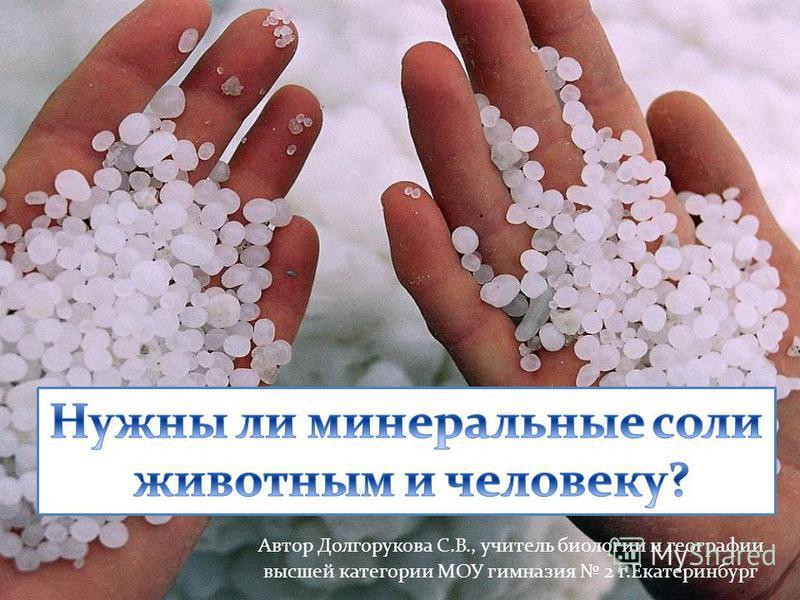 Автор Долгорукова С.В., учитель биологии и географии высшей категории МОУ гимназия 2 г.Екатеринбург