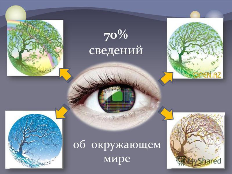 70% сведений об окружающем мире