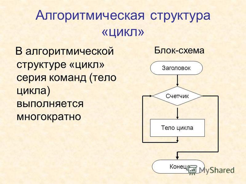 Алгоритмическая структура «цикл» В алгоритмической структуре «цикл» серия команд (тело цикла) выполняется многократно Блок-схема Заголовок Конец Счетчик Тело цикла