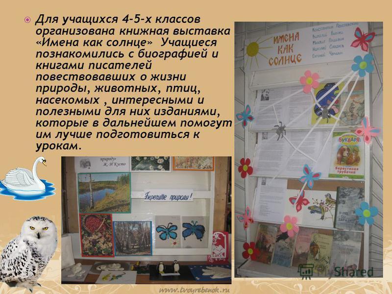 Для учащихся 4-5-х классов организована книжная выставка «Имена как солнце» Учащиеся познакомились с биографией и книгами писателей повествовавших о жизни природы, животных, птиц, насекомых, интересными и полезными для них изданиями, которые в дальне