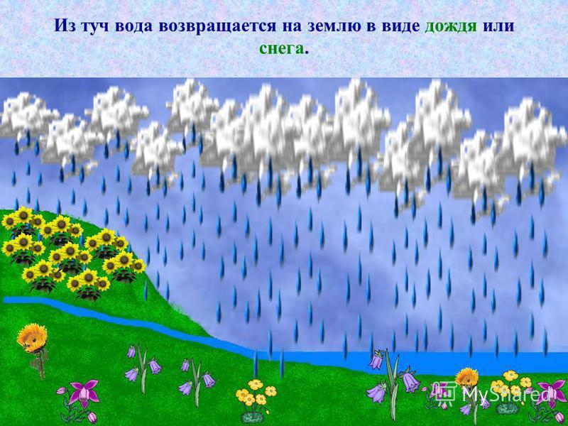 Из туч вода возвращается на землю в виде дождя или снега.