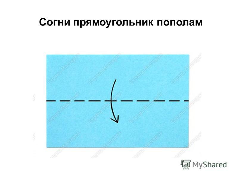 Согни прямоугольник пополам