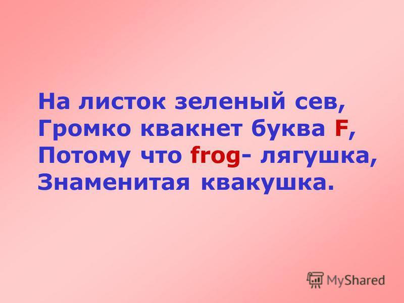 На листок зеленый сев, Громко квакнет буква F, Потому что frog- лягушка, Знаменитая квакушка.