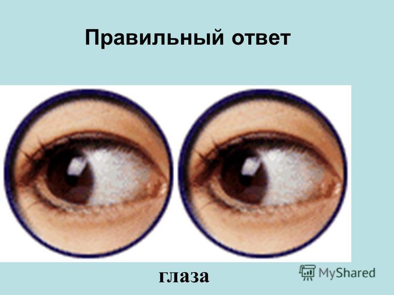 Эту часть тела называют «зеркало души».Она такая же хрупкая и восстановить её трудно. ноги нос уши глаза рот