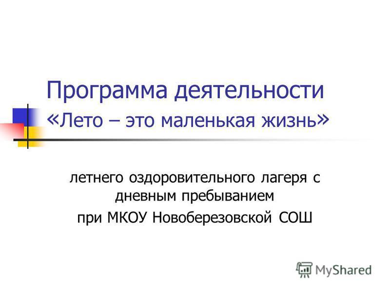 Программа деятельности « Лето – это маленькая жизнь » летнего оздоровительного лагеря с дневным пребыванием при МКОУ Новоберезовской СОШ