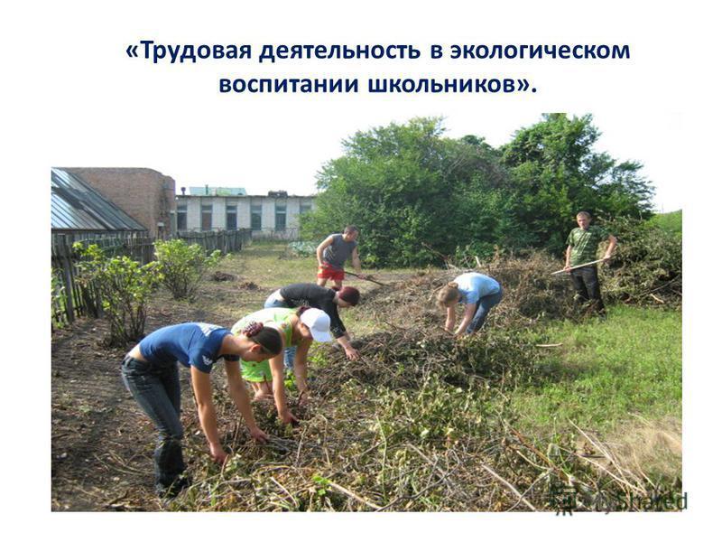 «Трудовая деятельность в экологическом воспитании школьников».