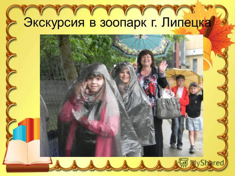 Экскурсия в зоопарк г. Липецка