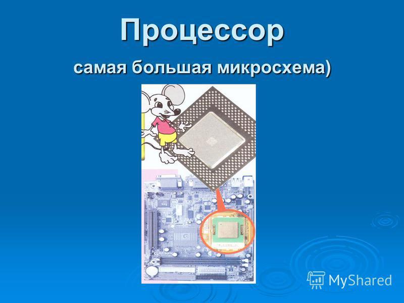 Процессор самая большая микросхема)