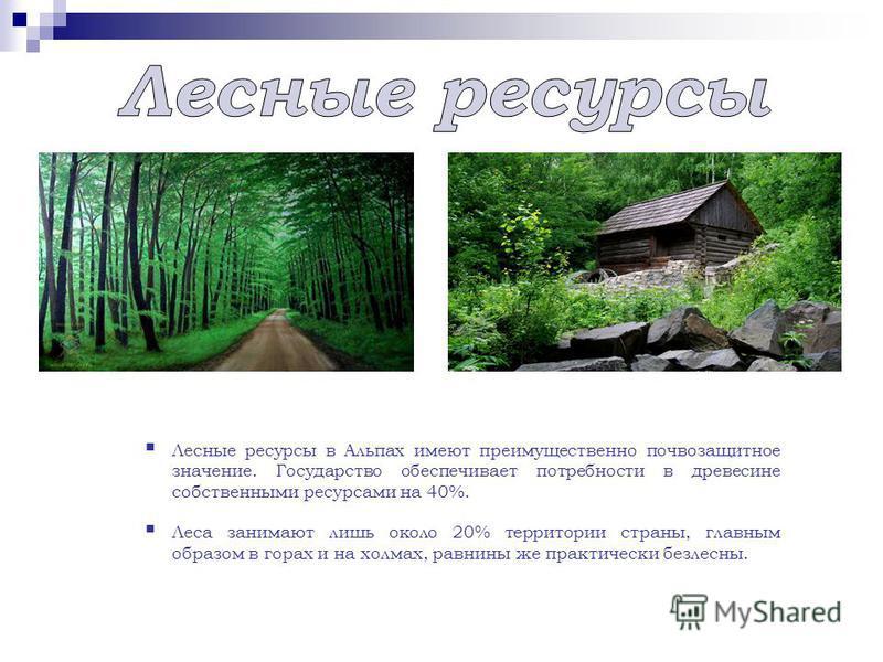 Лесные ресурсы в Альпах имеют преимущественно почвозащитное значение. Государство обеспечивает потребности в древесине собственными ресурсами на 40%. Леса занимают лишь около 20% территории страны, главным образом в горах и на холмах, равнины же прак