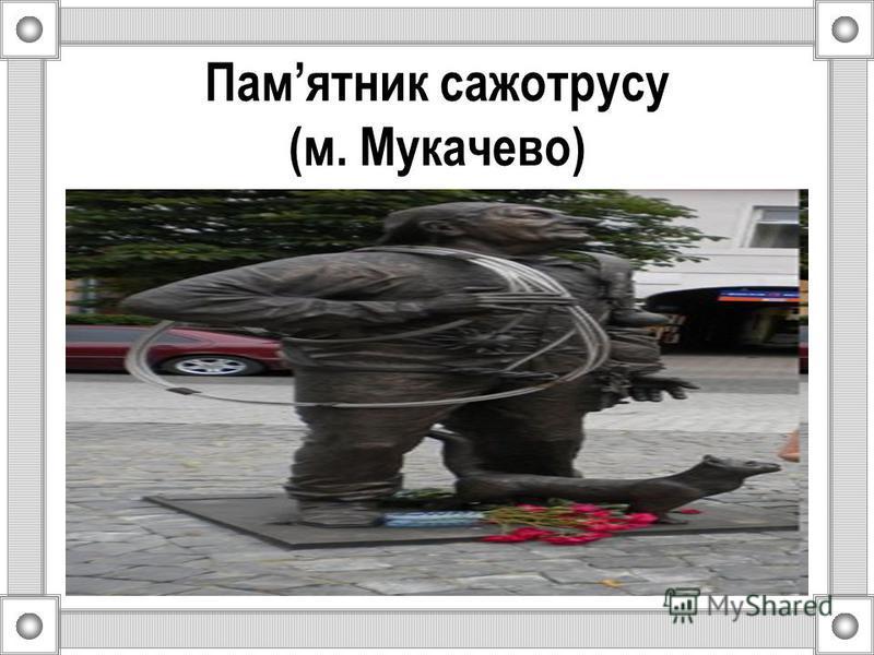 Памятник сажотрусу (м. Мукачево)