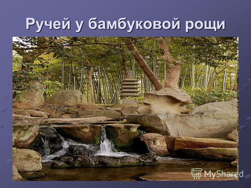 Ручей у бамбуковой рощи