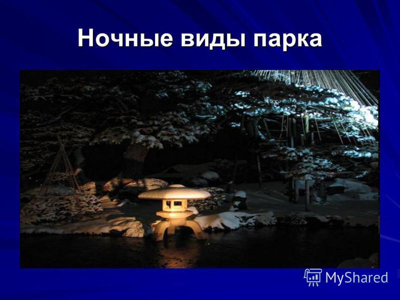 Ночные виды парка