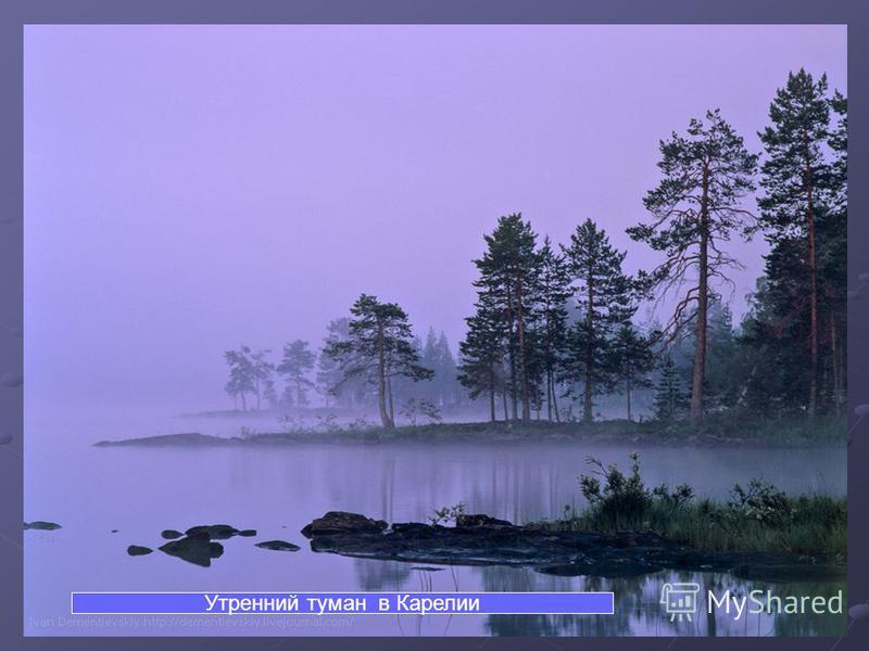 колор от слайда. Утренний туман в Карелии