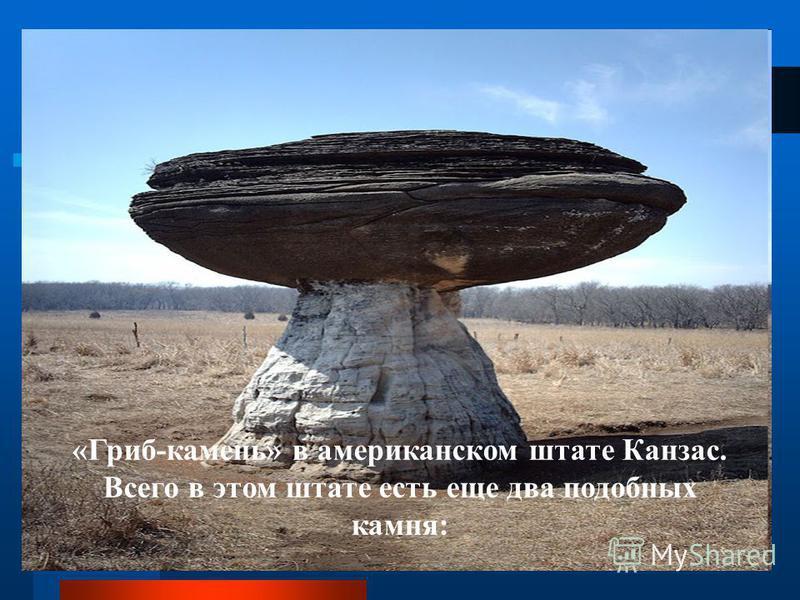 «Гриб-камень» в американском штате Канзас. Всего в этом штате есть еще два подобных камня: