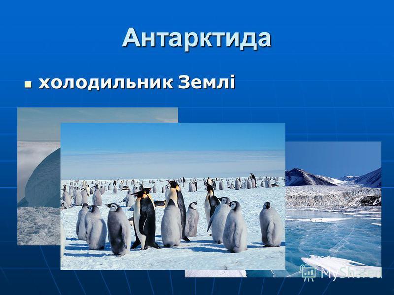 Антарктида холодильник Землі холодильник Землі