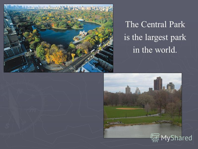 The Central Park is the largest park in the world.