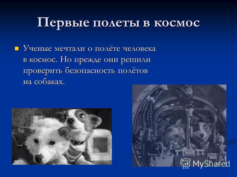 Первые полеты в космос Ученые мечтали о полёте человека в космос. Но прежде они решили проверить безопасность полётов на собаках. Ученые мечтали о полёте человека в космос. Но прежде они решили проверить безопасность полётов на собаках.
