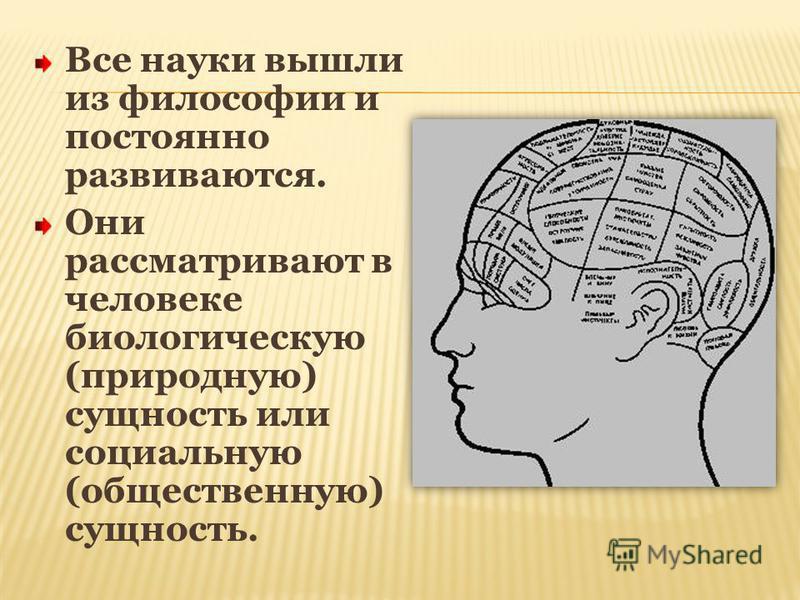 Все науки вышли из философии и постоянно развиваются. Они рассматривают в человеке биологическую (природную) сущность или социальную (общественную) сущность.