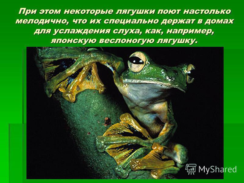 При этом некоторые лягушки поют настолько мелодично, что их специально держат в домах для услаждения слуха, как, например, японскую веслоногую лягушку.