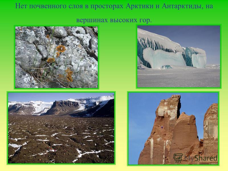 Нет почвенного слоя в просторах Арктики и Антарктиды, на вершинах высоких гор.
