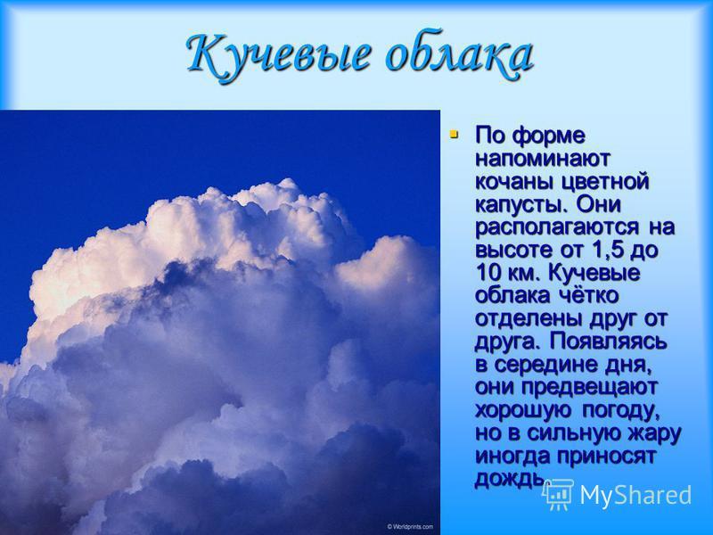 Кучевые облака По форме напоминают кочаны цветной капусты. Они располагаются на высоте от 1,5 до 10 км. Кучевые облака чётко отделены друг от друга. Появляясь в середине дня, они предвещают хорошую погоду, но в сильную жару иногда приносят дождь. По