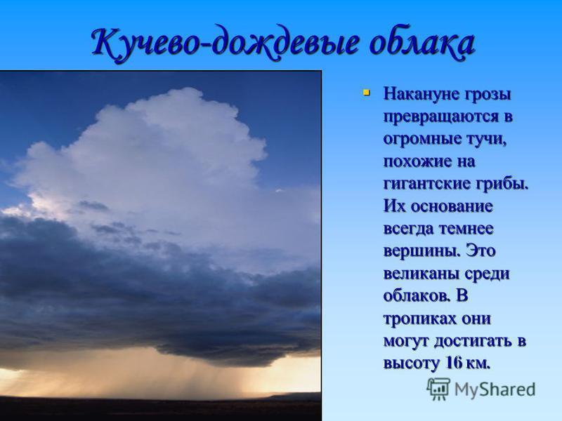 Кучево-дождевые облака Накануне грозы превращаются в огромные тучи, похожие на гигантские грибы. Их основание всегда темнее вершины. Это великаны среди облаков. В тропиках они могут достигать в высоту 16 км. Накануне грозы превращаются в огромные туч