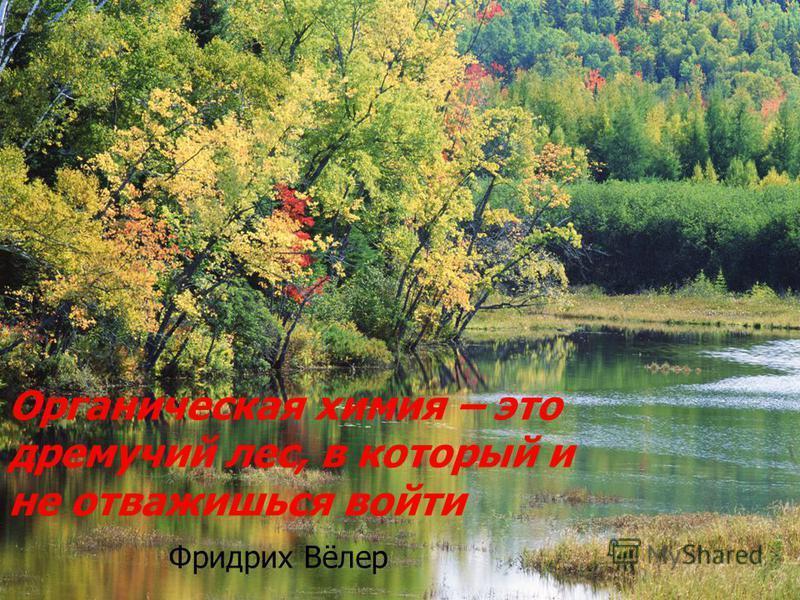 Органическая химия – это дремучий лес, в который и не отважишься войти Фридрих Вёлер