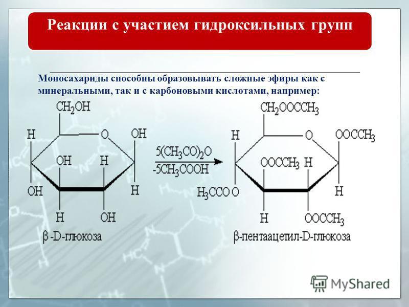 Реакции с участием гидроксильных групп Реакции образования эфиров. Моносахариты способны образовывать простые и сложные эфиры. Наиболее легко происходит замещение полиацетального (гликозидного) гидроксила: Простые эфиры получили название гликозидов.