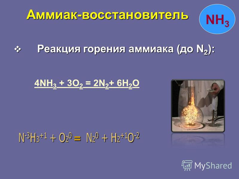 NH 3 Реакция горения аммиака (до N 2 ): Реакция горения аммиака (до N 2 ): 4NH 3 + 3O 2 = 2N 2 + 6H 2 O 4NH 3 + 3O 2 = 2N 2 + 6H 2 O= Аммиак-восстановитель Аммиак-восстановитель