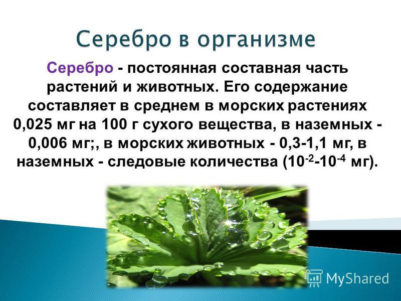 Серебро - постоянная составная часть растений и животных. Его содержание составляет в среднем в морских растениях 0,025 мг на 100 г сухого вещества, в наземных - 0,006 мг;, в морских животных - 0,3-1,1 мг, в наземных - следовые количества (10 -2 -10