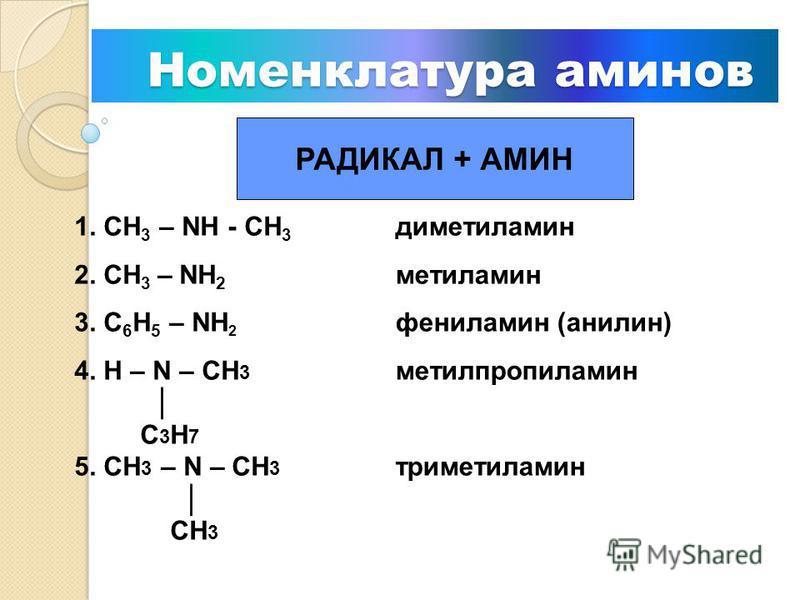 Классификация аминов Классификация аминов амины первичные СН3 – NН2 С 6 Н 5 – NН 2 вторичные H – N – CH3 С 3 Н 7 СН 3 – NН - СН 3 третичные CH3 – N – CH3 СН 3