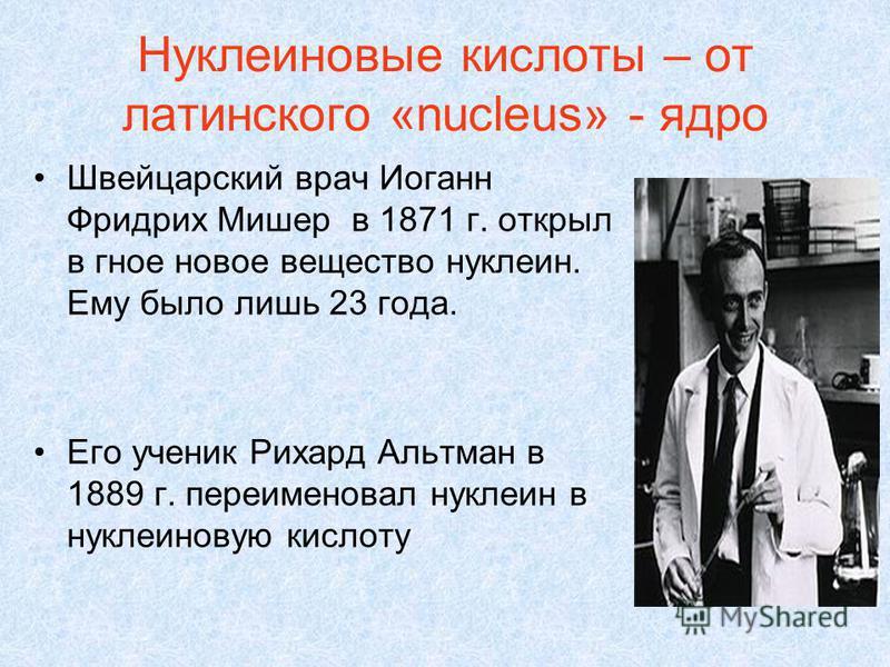 Нуклеиновые кислоты – от латинского «nucleus» - ядро Швейцарский врач Иоганн Фридрих Мишер в 1871 г. открыл в гное новое вещество нуклеин. Ему было лишь 23 года. Его ученик Рихард Альтман в 1889 г. переименовал нуклеин в нуклеиновую кислоту