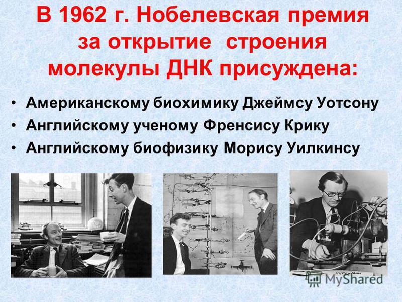 В 1962 г. Нобелевская премия за открытие строения молекулы ДНК присуждена: Американскому биохимику Джеймсу Уотсону Английскому ученому Френсису Крику Английскому биофизику Морису Уилкинсу