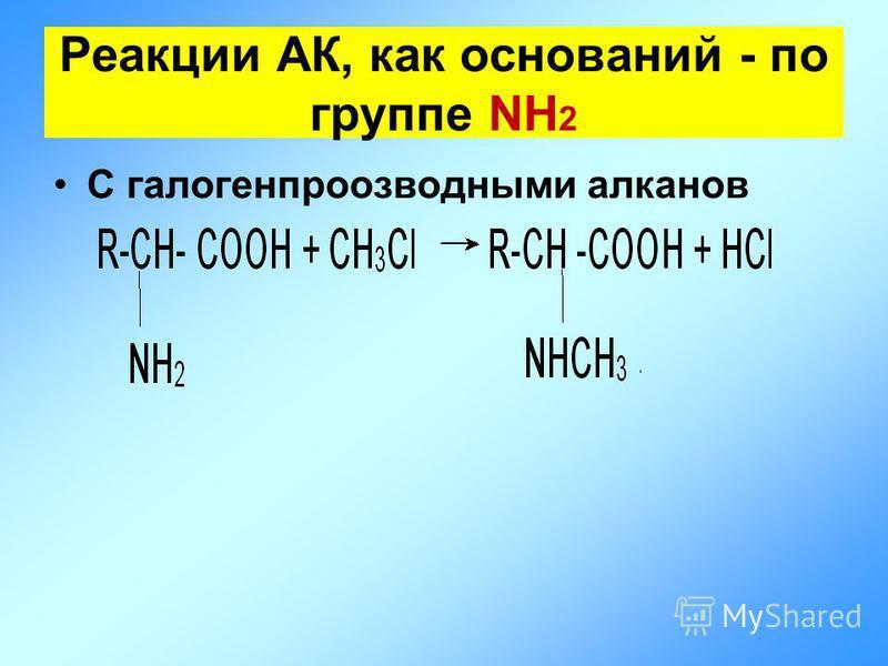 С галогенпроизводными алканов Реакции АК, как оснований - по группе NH 2