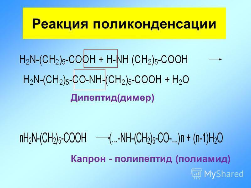 Дипептид(димер) Капрон - полипептид (полиамид) Реакция поликонденсации