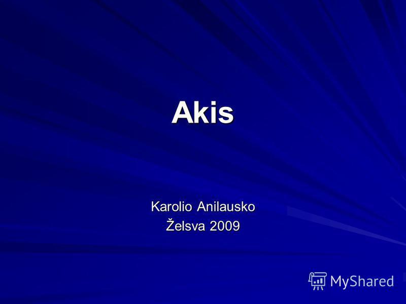 Akis Karolio Anilausko Želsva 2009