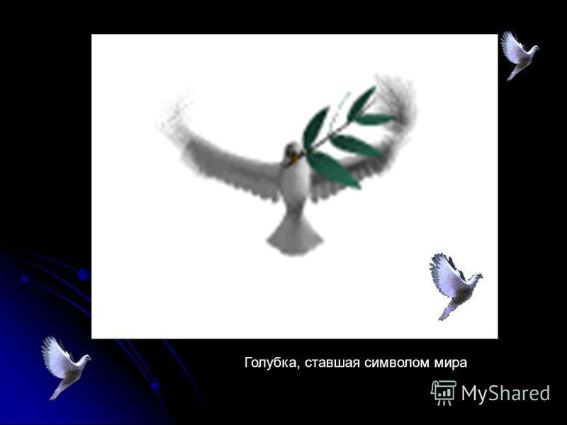 Голубка, ставшая символом мира