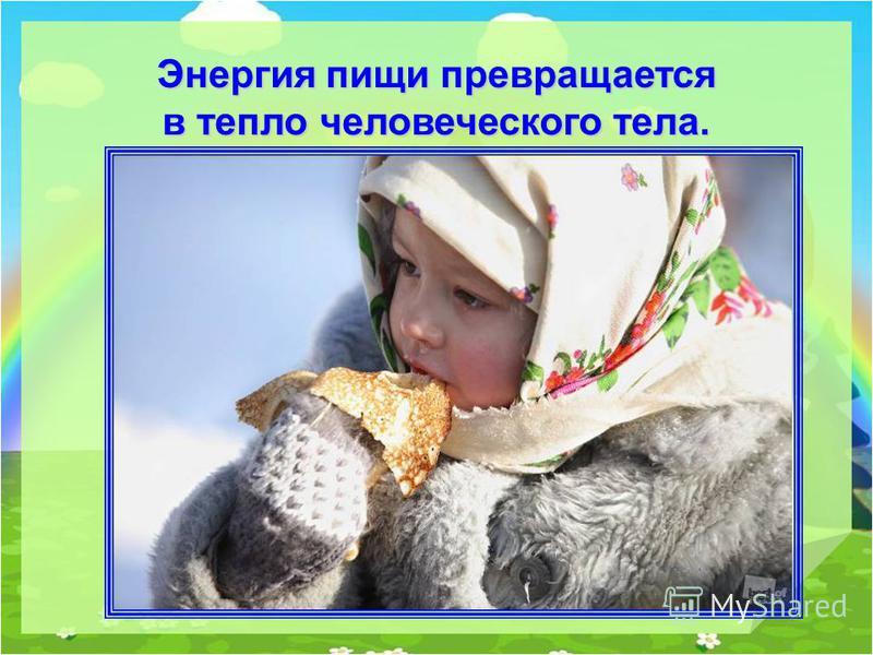 Энергия пищи превращается в тепло человеческого тела.