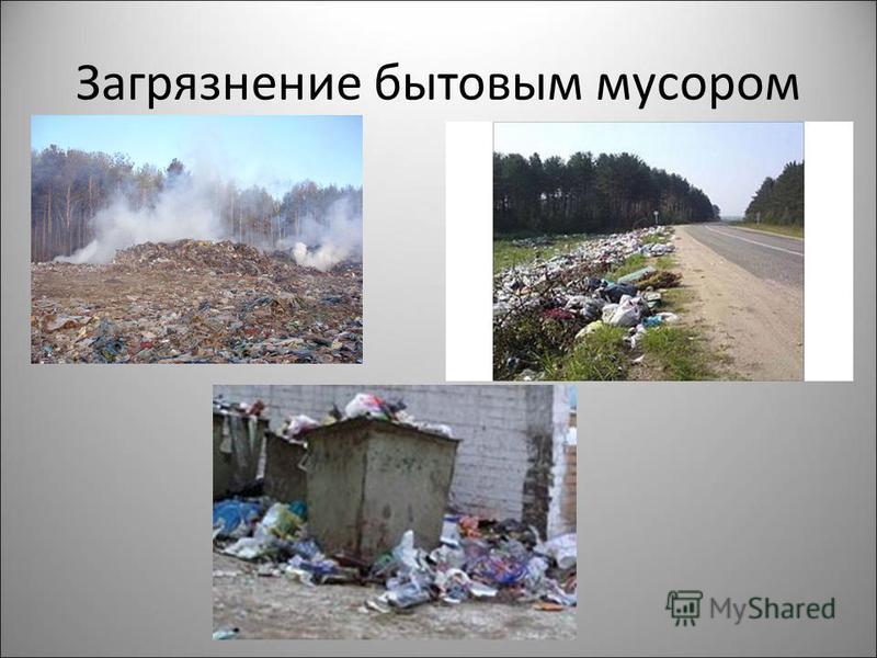 Загрязнение бытовым мусором