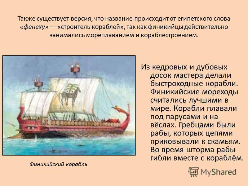 Также существует версия, что название происходит от египетского слова «фенеху» «строитель кораблей», так как финикийцы действительно занимались мореплаванием и кораблестроением. Из кедровых и дубовых досок мастера делали быстроходные корабли. Финикий
