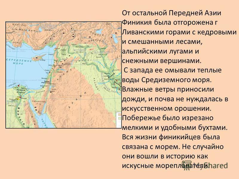 От остальной Передней Азии Финикия была отгорожена г Ливанскими горами с кедровыми и смешанными лесами, альпийскими лугами и снежными вершинами. С запада ее омывали теплые воды Средиземного моря. Влажные ветры приносили дожди, и почва не нуждалась в