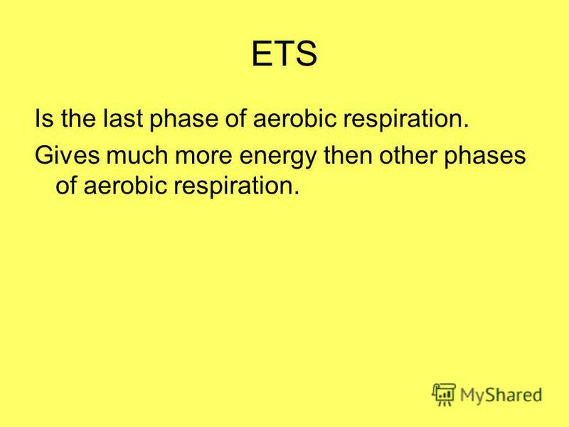 ETS Is the last phase of aerobic respiration. Gives much more energy then other phases of aerobic respiration.
