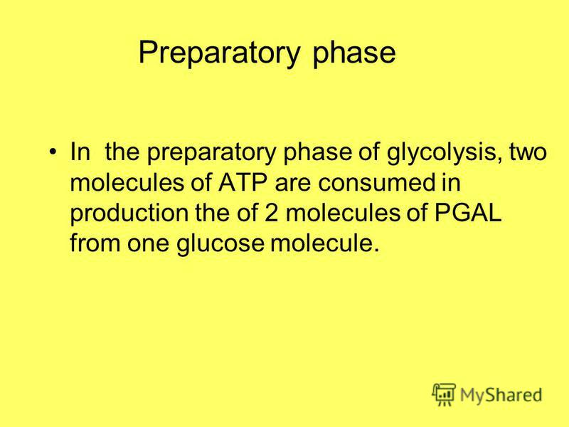 Preparatory phase In the preparatory phase of glycolysis, two molecules of ATP are consumed in production the of 2 molecules of PGAL from one glucose molecule.