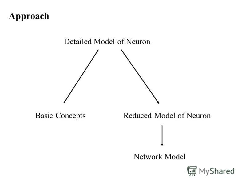 Approach Basic Concepts Detailed Model of Neuron Reduced Model of Neuron Network Model